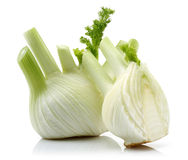Fresh Fennel and Half Fennel Royalty Free Stock Image