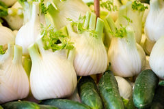 Fresh fennel on the market Stock Images