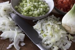 Fresh Fennel and Onion Slices Stock Photos