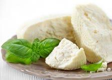 Fresh feta cheese Stock Images