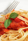 Fresh Fettuccine With Spaghetti Sauce Stock Images
