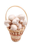 Fresh field mushrooms in a basket Royalty Free Stock Images