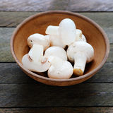 Fresh field mushrooms in a ceramic bowl Stock Photography