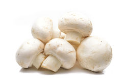 Fresh field mushrooms on a white background Stock Images