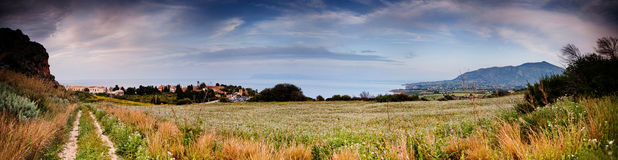 Fresh field panoramic view Royalty Free Stock Photos