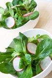 Fresh field salad Stock Photo
