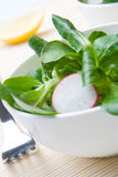 Fresh field salad. Dishes of fresh field salad and slices of radish Stock Image