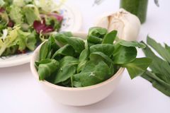 Fresh field salad Royalty Free Stock Images