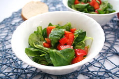 fresh field salad with tomato Royalty Free Stock Images
