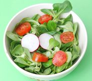 Fresh field salad with tomatoes and radish. A fresh field salad with tomatoes and radish Stock Photo