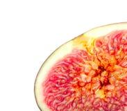 Fresh Fig stock photos