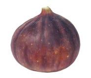 Fresh fig. On white background Stock Photography