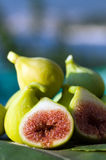 Fresh fig. Nicely detailed shot of fig Royalty Free Stock Images