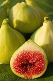 Fresh fig. Nicely detailed shot of fig Stock Image