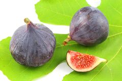 Fresh fig fruits on a fig leaf. Composition of fresh fig fruits on a fig leaf royalty free stock photo