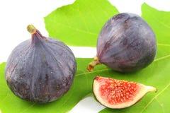 Fresh fig fruits on a fig leaf. Composition of fresh fig fruits on a fig leaf stock images