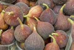 Fresh figs. In an outdoor food market Royalty Free Stock Photo