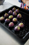 Fresh figs in a baking tray Royalty Free Stock Photo