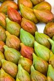 Fresh figs close up Royalty Free Stock Photography