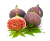 Fresh figs closeup on white background Stock Photography