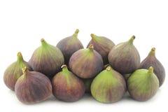 Fresh figs (Ficus carica) Stock Image