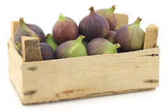 Fresh figs (Ficus carica) in a wooden crate Royalty Free Stock Photography