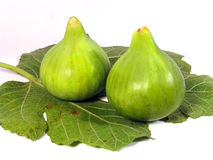 Fresh Figs green Stock Image