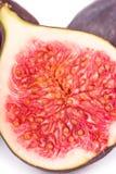 Fresh figs macro Stock Photography