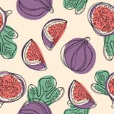 Fresh figs seamless pattern. Fruit with half and quarter isolated on white background. Vector. Fresh figs seamless pattern. Fruit with half and quarter isolated Royalty Free Stock Photo