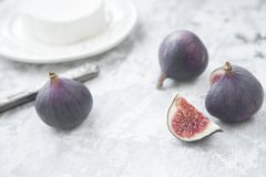 Fresh figs on shabby background. Some fresh figs on grey shabby background royalty free stock image