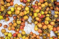 Fresh Figs, vietnamese fruit Royalty Free Stock Photos