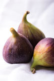 Fresh figs on white Stock Photography