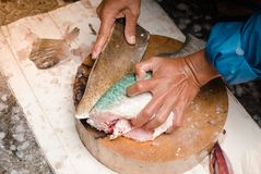 Fresh filleted fish for sale. Fresh filleted fish were sold in the urban market. Bangkok, Thailand Stock Images