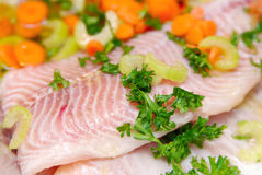 Fresh fillets of fish stock photography