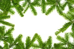Fresh fir twigs border Royalty Free Stock Photography
