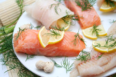 Fresh fish. Some fresh, raw fish like salmon and pangasius on a plate Royalty Free Stock Photo