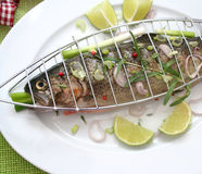 Fresh fish. Some fresh, raw fish with onions and pepper seeds Royalty Free Stock Images