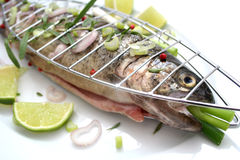 Fresh fish. A fresh, raw fisch with pepper and onions Royalty Free Stock Photo