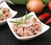 Fresh fish. Some fresh tuna fish with onions and rosemary Royalty Free Stock Images