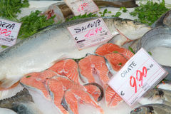 Fresh fish. On sale at local market Royalty Free Stock Photos