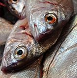 Fresh fish. To sell at a market stall Stock Photo