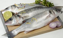 Fresh Fish Stock Photography