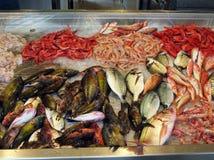 Fresh fish. Fish on a fish market Stock Image