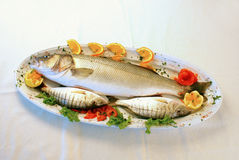 Fresh fish. A plate with fresh fish and vegetables stock image