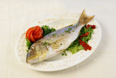 Fresh fish. A plate with fresh fish and vegetables stock photography