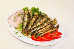 Fresh fish. A plate with fresh fish and vegetables royalty free stock photo