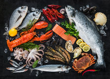 Free Fresh Fish And Seafood Royalty Free Stock Photography - 87884247