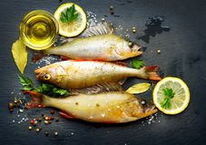 Fresh fish with aromatic herbs, spices, salt Royalty Free Stock Image