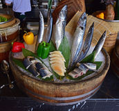 Fresh Fish arrangement for food presentation at a hotel buffet restaurant. The presentation is for the Japanese section of the international buffet lunch Royalty Free Stock Images