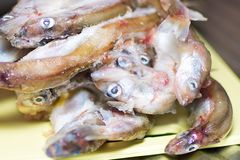 Fresh fish as abstract background. stock photo